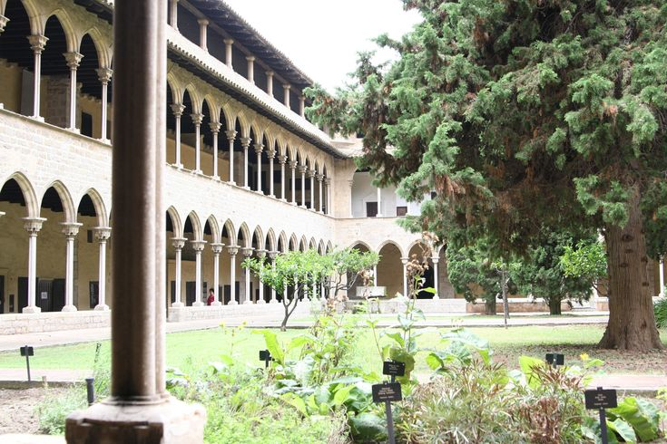 What to visit in Barcelona? The Monastery of Pedralbes!
