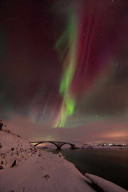 Northern Lights - Iceland. I would love to experience this beauty once in my life. One day, I know it'll happen for me.