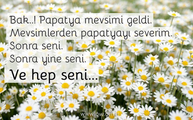 """"""" Bak..! Papatya mevsimi geldi. Mevsimlerden papatyayı severim. Sonra seni. Sonra yine seni. Ve hep seni..."""" www.love.gen.tr #Aşk #Sevgi #Papatya"""