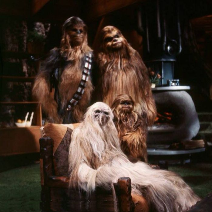 Wookies,The Star Wars Holiday Special television broadcast circa November 17, 1978