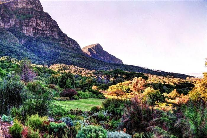 Kirstenbosch National Botanical Garden in Africa