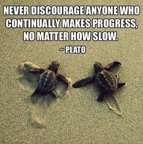 Plato #Quote repinned by @3MomsTips 3MomsTips.com