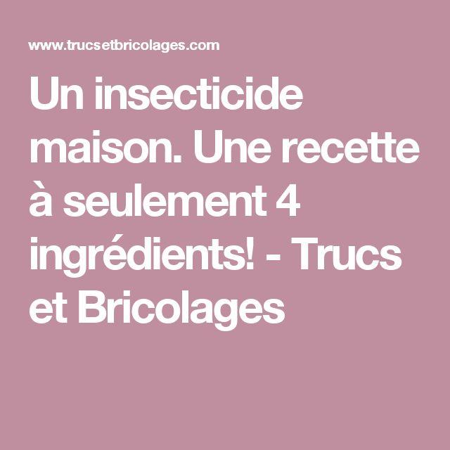 Un insecticide maison. Une recette à seulement 4 ingrédients!  - Trucs et Bricolages