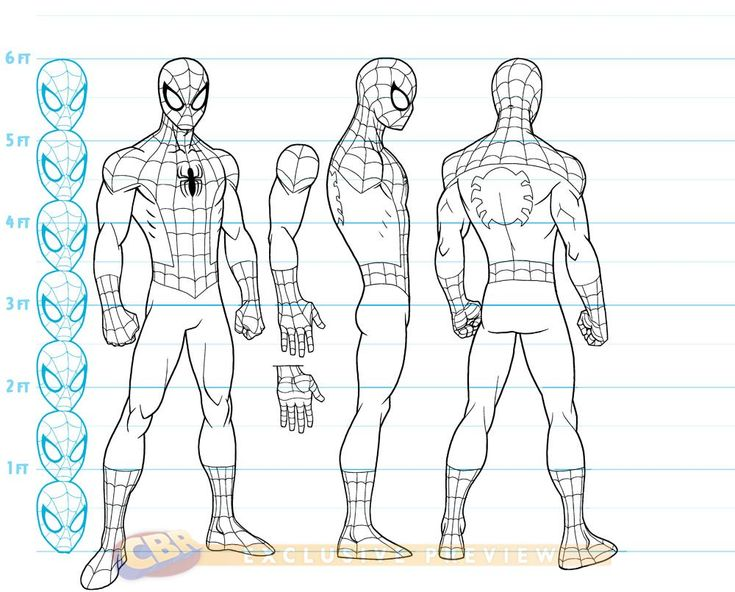 Cartooning Ultimate Character Design Book : Ultimate spider man animated series concept art includes