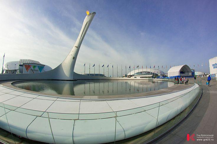 Олимпийская чаша. Сочи 2014