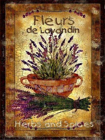 Fleurs de Lavandin