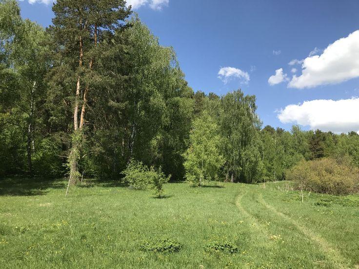 Турынино, Ждамировская, участок 8 соток