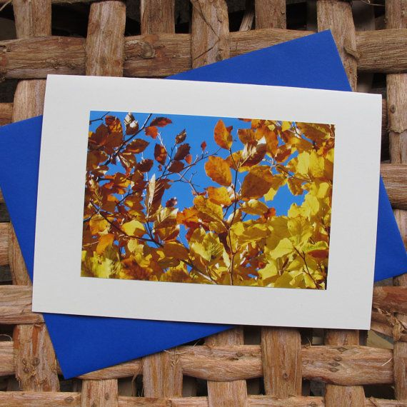 Large photo greetings card. Autumn leaves 1. by Saraphir on Etsy