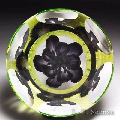 "Caithness Glass 2016 ""Black Jack"" purple flower magnum faceted paperweight"