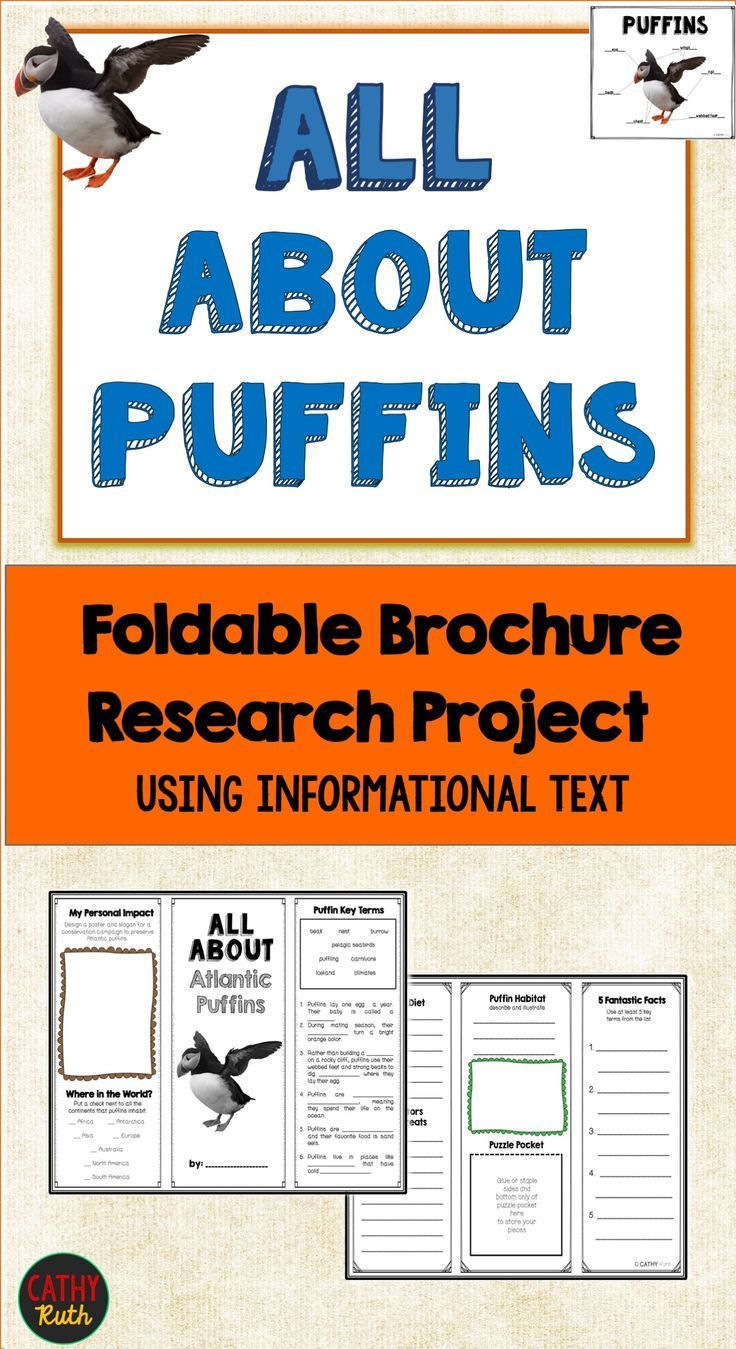 Puffins, Research Brochure Project, Using Informational Text, Vocab – Cathy Ruth / TeachersPayTeachers Author Of Interactive, Hands-on Original Resources