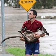 queensland floods - Google Search