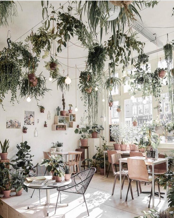 """WILDERNIS, (Plant Shop), Amsterdam, The Netherlands, """"We make the city green, in-and outside!"""", photo by The Shopkeepers, pinned by Ton van der Veer"""