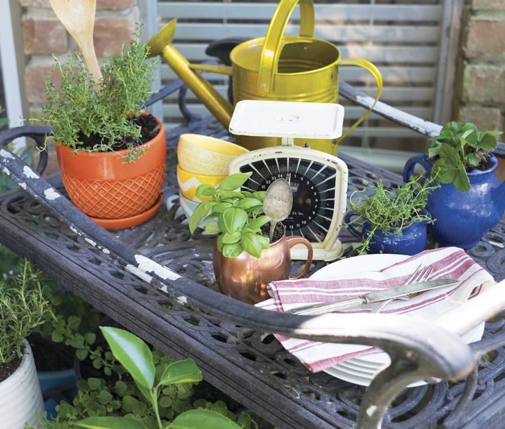 Kitchen Inspired Container Gardening For Balcony