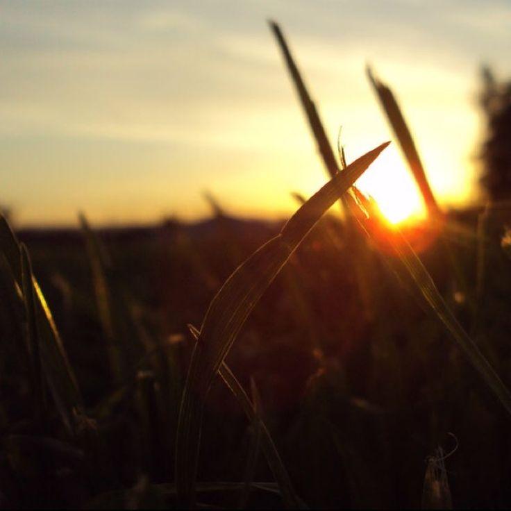 Mixab.ly | You've Got the magic 1-Labyrinth #nitrofun #reaktion  2-Blackout #tritonal #stephjones  3-Build in the Cities #rootkit remix #karmafields #kerli 4-Cork Trees #pheeno 5-The hedonist #pheeno  6-Burning Daylight #steerner #wahlstedt  7-All night #stonebank  8-Ceilings #pheeno #theventurebrothers  9-Run to You #meronryan #summerwasfun  10-Collide #jonathanthulin #builtbytitan