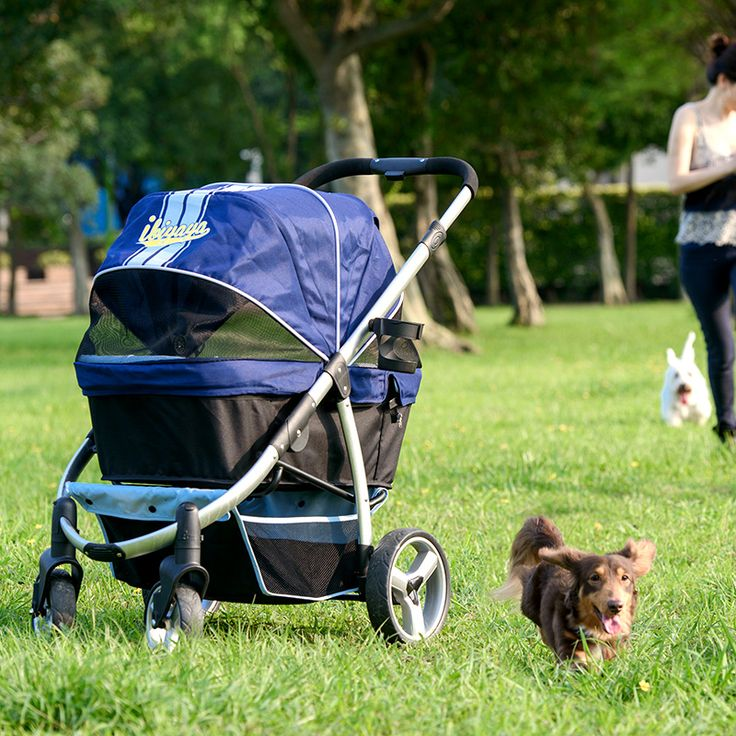 M s de 25 ideas incre bles sobre carrito para mascotas en for Carritos para perros