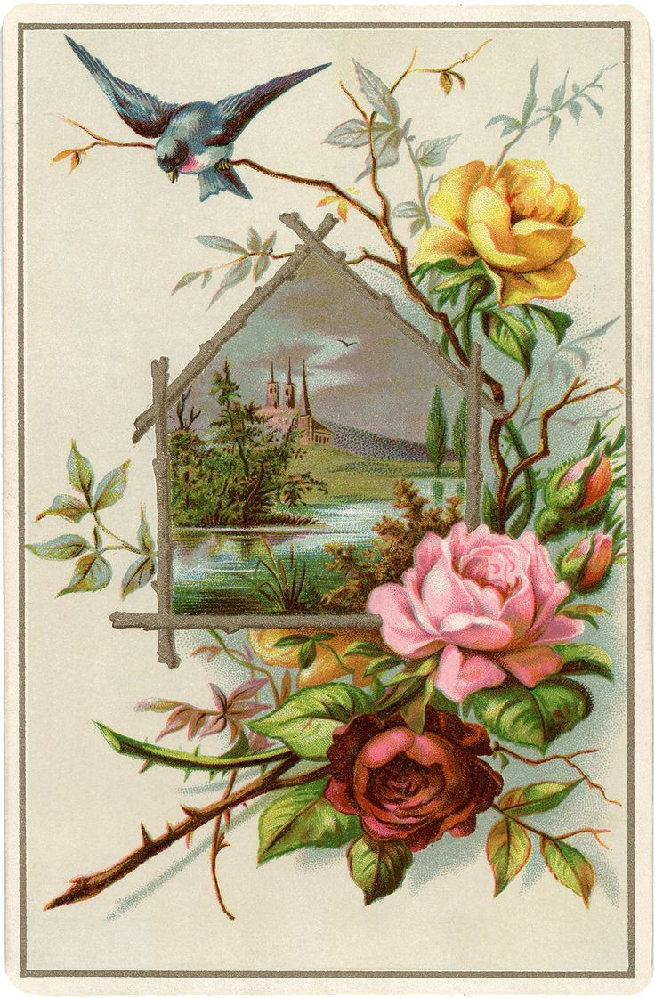Для, винтажная роза открытка