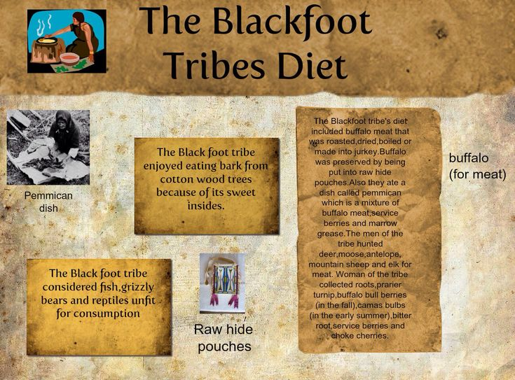 Blackfoot tribe fun facts blackfoot tribe pinterest for American cuisine facts