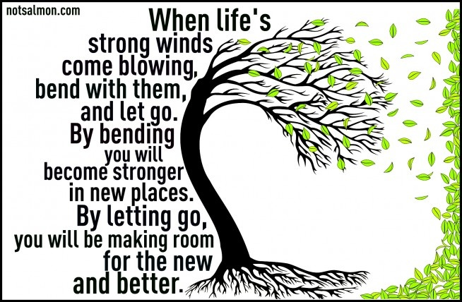 When life's strong winds come blowing, bend with them, and let go. By tending you will become stronger in new places. by letting go, you will be making room for the new and better.