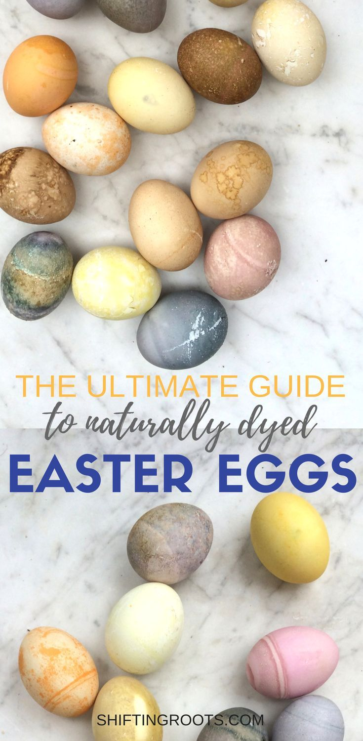 Give your Easter egg decorating a natural twist and learn how to make naturally dyed Easter eggs.  A fun and creative way to decorate your hard boiled eggs this Easter.  Over 24 DIY dye ideas and recipes you can try. via @shifting_roots