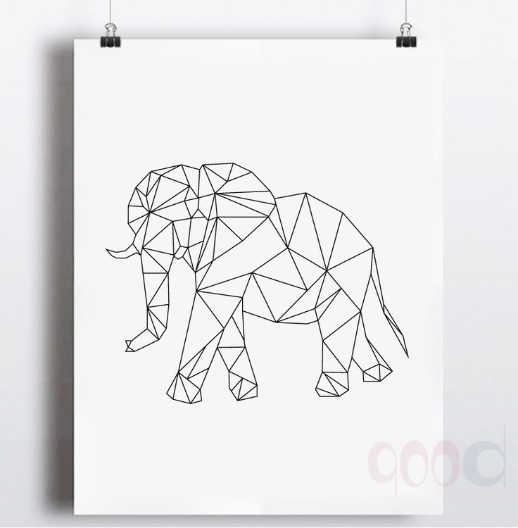66 best coloringzoo images on