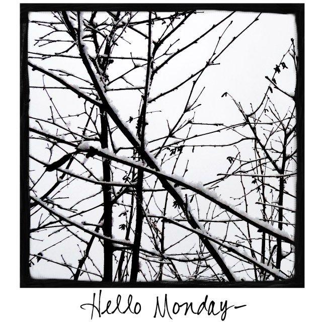 Hello Monday! Come visit www.awarmhello.com