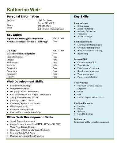 25 best ideas about web developer cv on