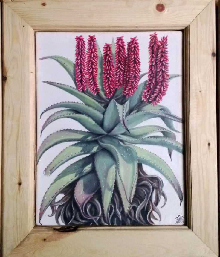 Red Aloe - by Dawn Du Preez  oil on Canvas  Available on http://sherrynssecret.com/index.php?route=product/category&path=126