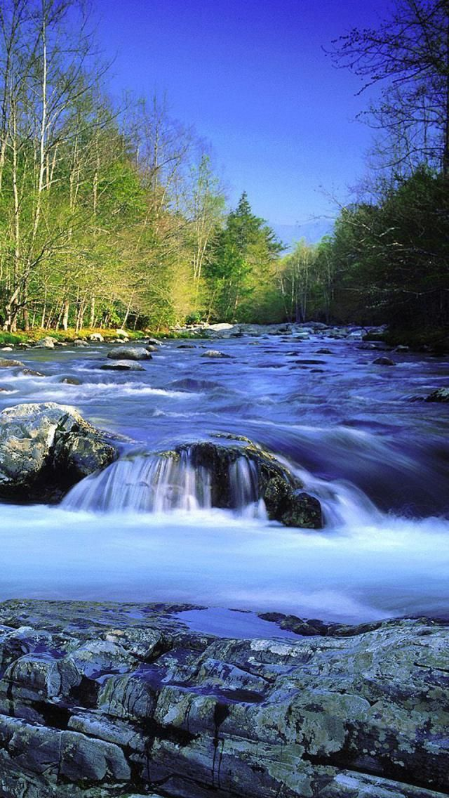 Little Pigeon River, Great Smoky Mountains National Park, Tennessee, United States | HD iPhone Wallpapers