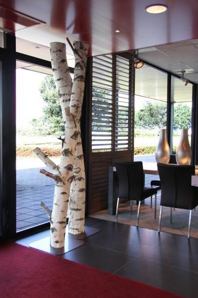 Berken stammen op voet verkrijgbaar webshop www.decoratietakken.nl