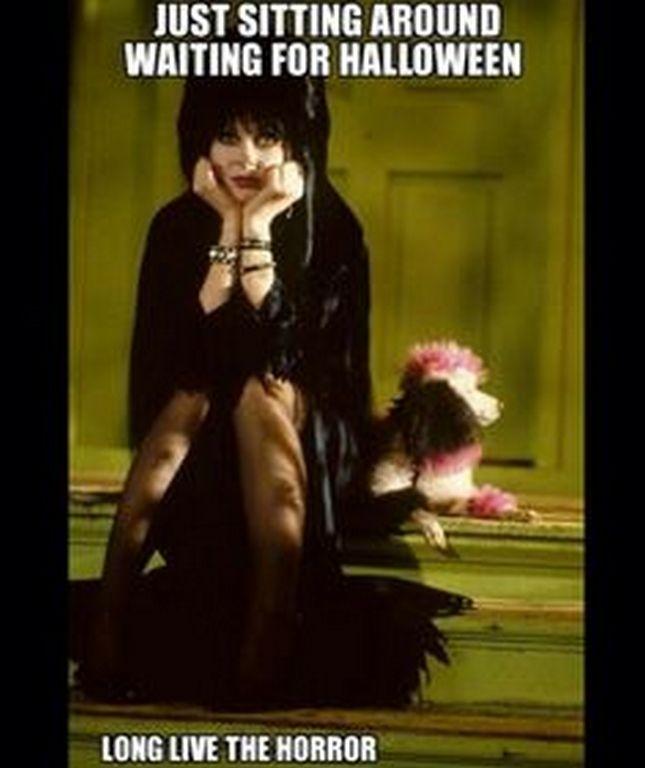 Waiting For Halloween Halloween Halloween Quotes Halloween Quote Elvira  Halloween Humor Funny Halloween