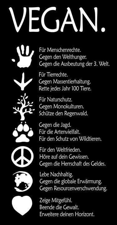 german illustration explaining the reasons for being vegan.