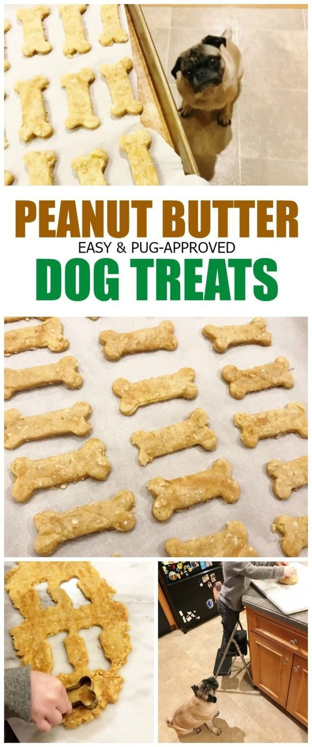 Monday In Meals + Pug-Approved Peanut Butter Dog Treats | Carrots 'N' Cake | Bloglovin'