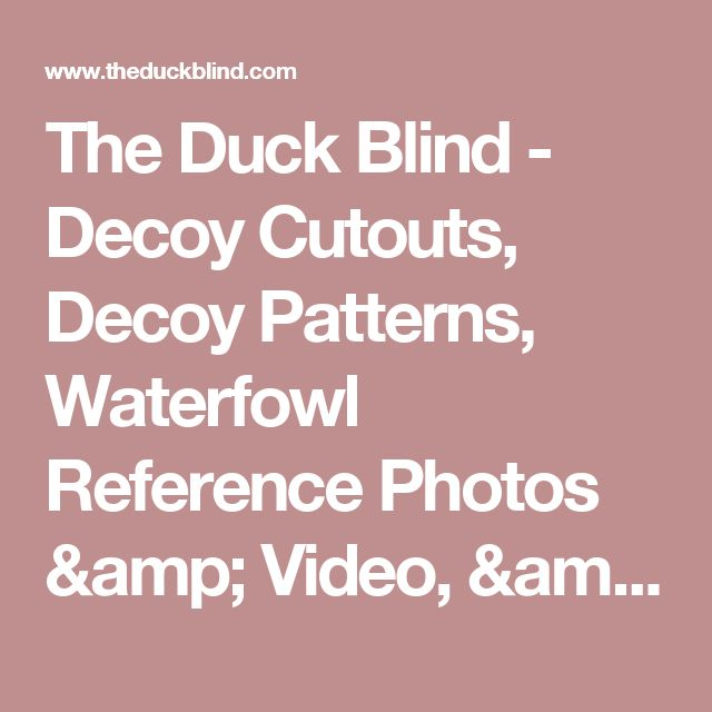 The Duck Blind - Decoy Cutouts, Decoy Patterns, Waterfowl Reference  Photos & Video, &  Decoy Carving & Painting Supplies