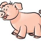 The Three Little Pigs and The Three Little Javelinas- Active Inspire for Promethean Board...