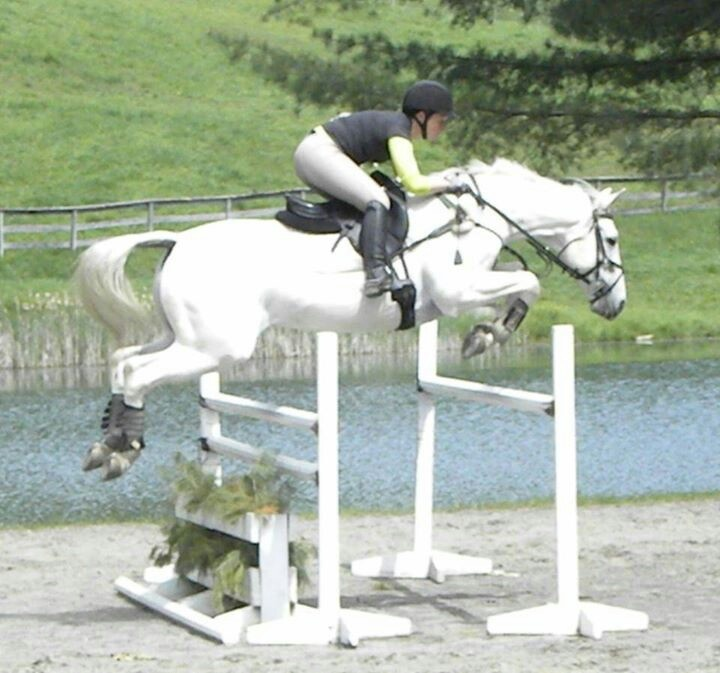 Here's #OTTB Tamarack soaring over a fence - retired racehorses are the best!