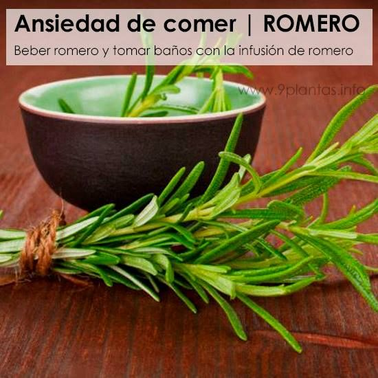 Ansiedad de comer | ROMERO Beber romero y tomar baños con la infusión de romero... aprende mas aquí: