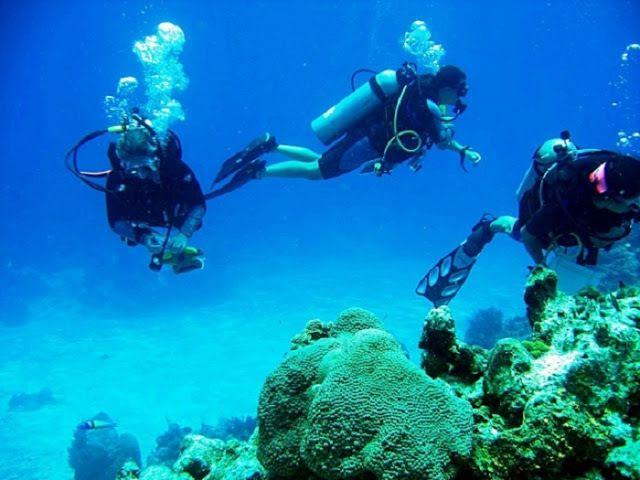https://adventurefanatic.wordpress.com/2015/02/05/scuba-diving-in-goa/ >> Scuba diving in Goa Cost – Experience of a lifetime at affordable costs  #ScubaDiving #Goa #NetraniIslands #Islands #Beaches