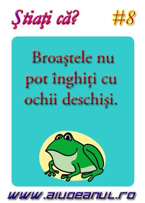 Broaştele nu pot înghiţi cu ochii deschişi?