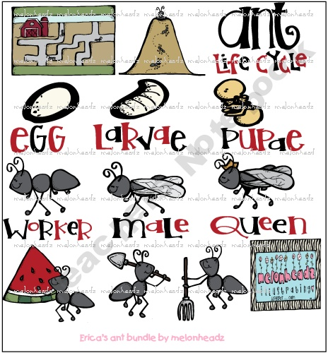 Melonheadz-Illustrations Shop - | Teachers NotebookAnts United, Ants Life Cycling, Clip Art, Insects Clipart, Life Cycles, Awesome Ants, Line Art, 2Nd Grade, Clips Art