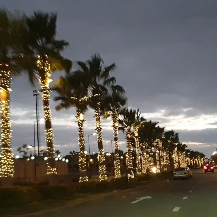 Naglaa Badr On Instagram حلوة يا بلدي Cairoegypt Egyptian Winter Coldweather Coldoutside Marina Bay Sands Marina Bay City