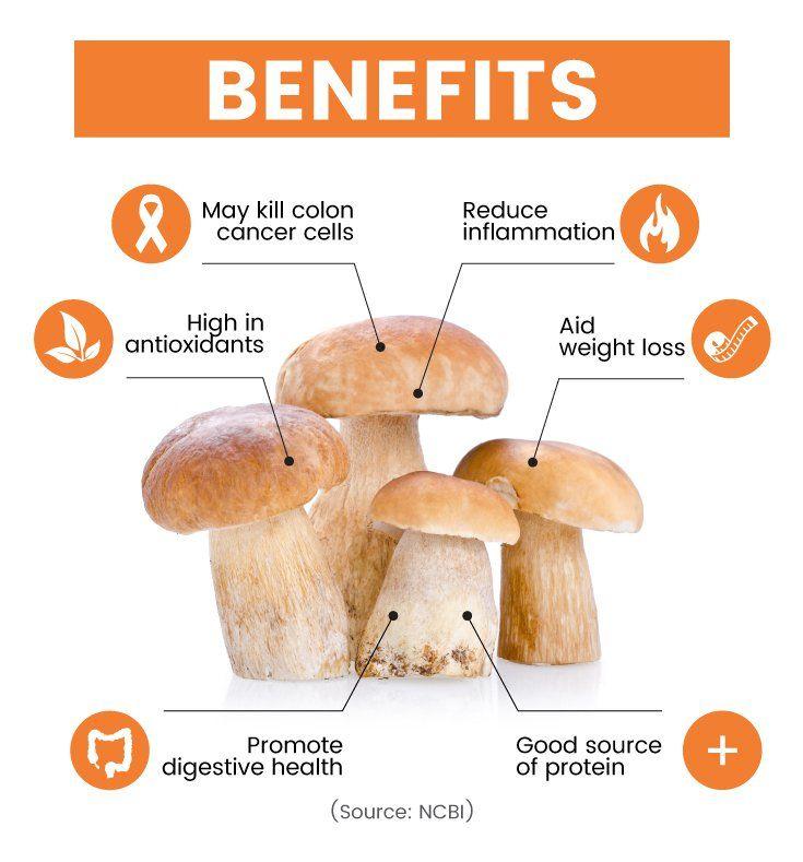 Porcini mushroom benefits - Dr. Axe