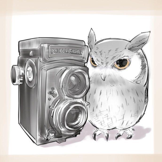 """트위터의 o-ji 님: """"知人のカメラとさつま https://t.co/Gi7HidJ38c"""""""