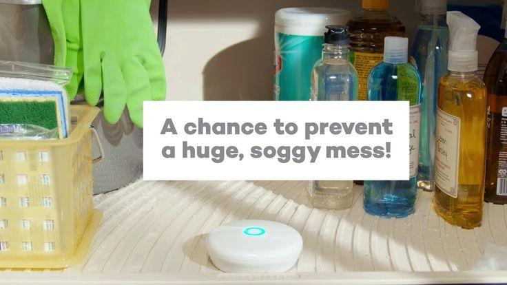 29 best kraftmaid kitchen bath storage ideas images on for Kraftmaid coreguard