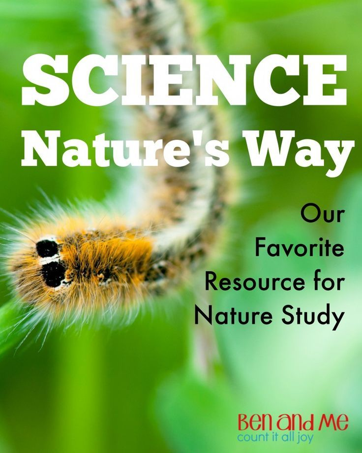 Science With Nature Study Our Favorite Resource Teaching Science Science Curriculum Nature Study