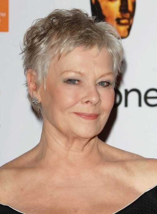 images of short shaggy haircuts 2015 for women over 40 with thin fine hair - Google Search