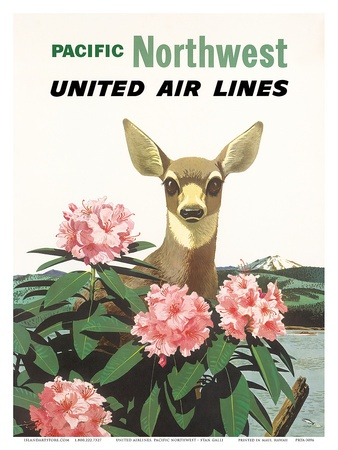 deer Northwest    poster airlines vintage rockstar fitflop Air United U S  Pacific Lines