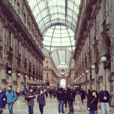Medio shopping