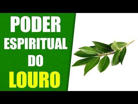 Plantas que Curam - Benzimento com Louro - Limpeza Espiritual e Proteção Espiritual - YouTube