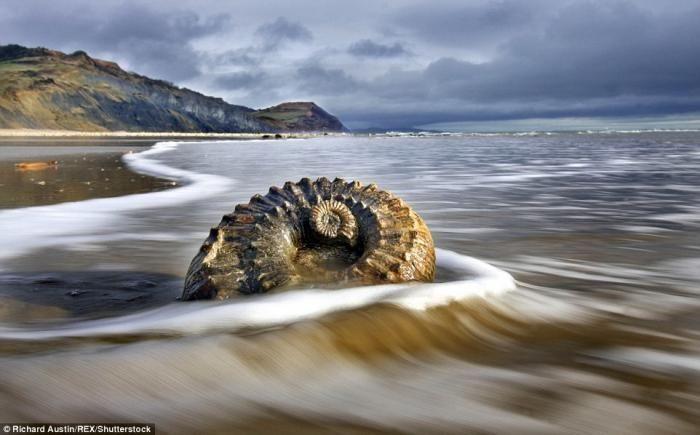 20 лучших пляжей мира по версии National Geographic