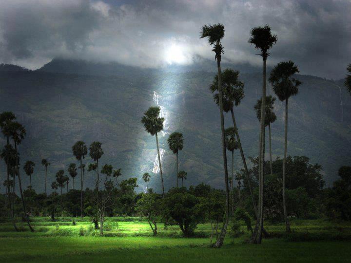 Incredible India !    kollengode Palakkad,Kerala !
